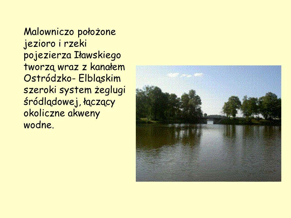 Malowniczo położone jezioro i rzeki pojezierza Iławskiego tworzą wraz z kanałem Ostródzko- Elbląskim szeroki system żeglugi śródlądowej, łączący okoli