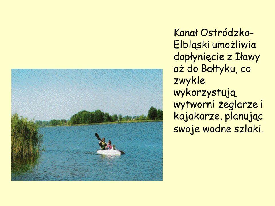 Kanał Ostródzko- Elbląski umożliwia dopłynięcie z Iławy aż do Bałtyku, co zwykle wykorzystują wytworni żeglarze i kajakarze, planując swoje wodne szla