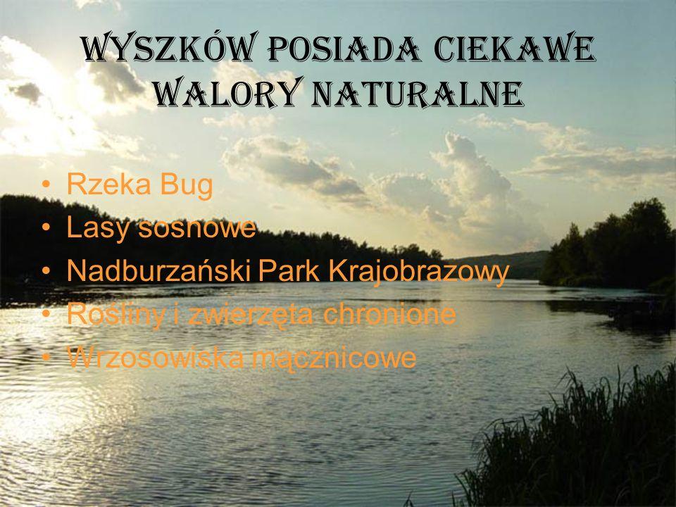 Wyszków posiada ciekawe walory naturalne Rzeka Bug Lasy sosnowe Nadburzański Park Krajobrazowy Rośliny i zwierzęta chronione Wrzosowiska mącznicowe