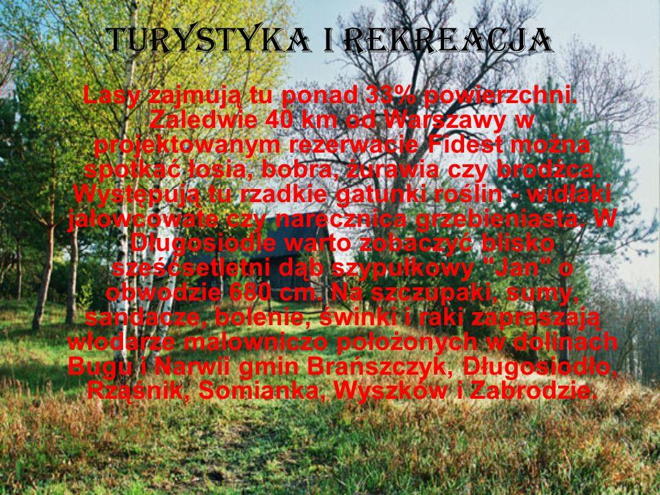Turystyka i rekreacja Lasy zajmują tu ponad 33% powierzchni. Zaledwie 40 km od Warszawy w projektowanym rezerwacie Fidest można spotkać łosia, bobra,