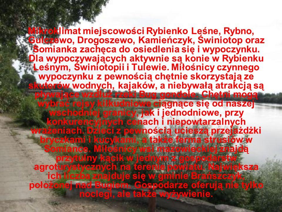Mikroklimat miejscowości Rybienko Leśne, Rybno, Gulczewo, Drogoszewo, Kamieńczyk, Świniotop oraz Somianka zachęca do osiedlenia się i wypoczynku. Dla