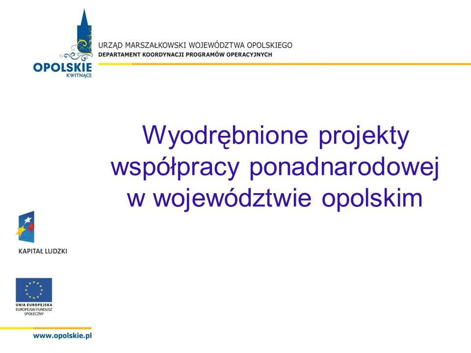 Wyodrębnione projekty współpracy ponadnarodowej w województwie opolskim