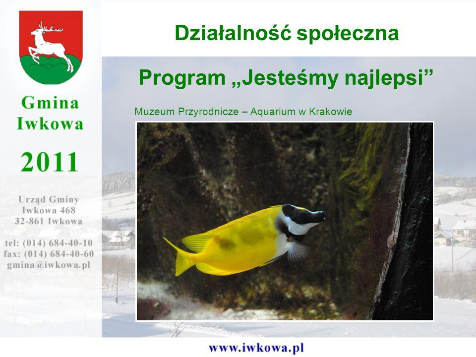 Program Jesteśmy najlepsi Muzeum Przyrodnicze – Aquarium w Krakowie Działalność społeczna