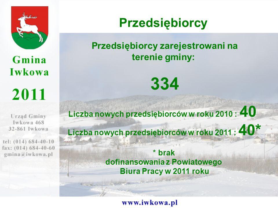 Przedsiębiorcy Przedsiębiorcy zarejestrowani na terenie gminy: 334 Liczba nowych przedsiębiorców w roku 2010 : 40 Liczba nowych przedsiębiorców w roku 2011 : 40* * brak dofinansowania z Powiatowego Biura Pracy w 2011 roku