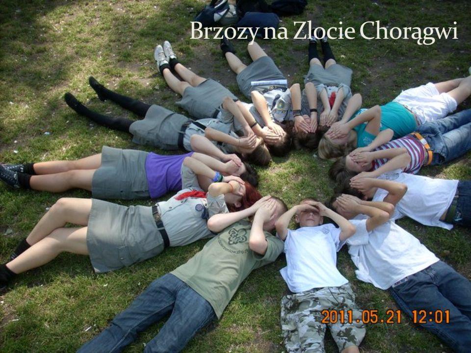 Brzozy na Zlocie Chorągwi