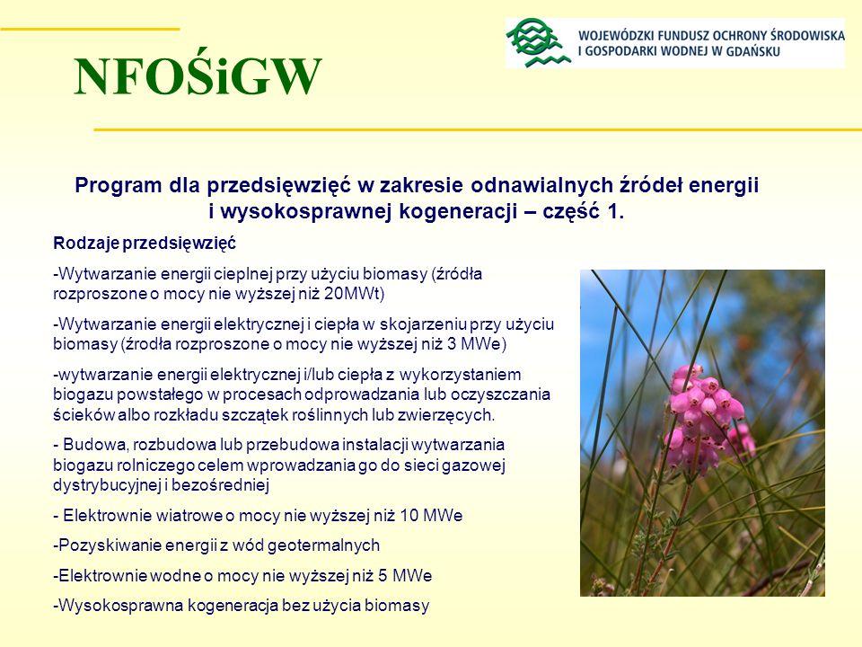 Program dla przedsięwzięć w zakresie odnawialnych źródeł energii i wysokosprawnej kogeneracji – część 1. Rodzaje przedsięwzięć -Wytwarzanie energii ci