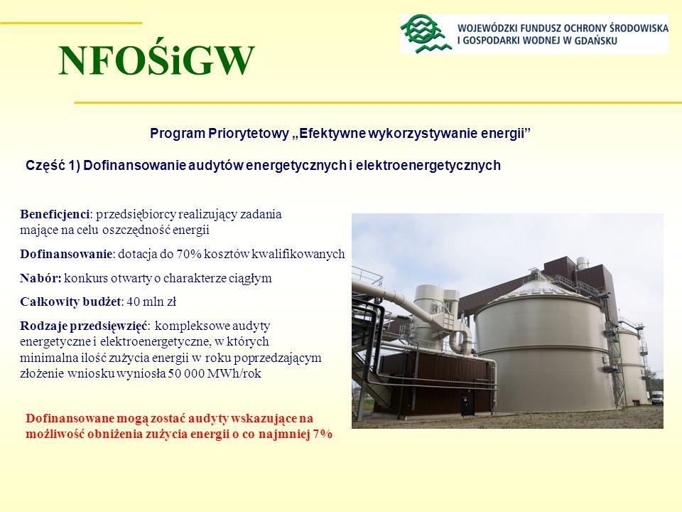 Program Priorytetowy Efektywne wykorzystywanie energii Część 1) Dofinansowanie audytów energetycznych i elektroenergetycznych Beneficjenci: przedsiębi
