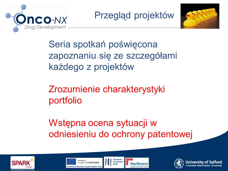 Przegląd projektów Seria spotkań poświęcona zapoznaniu się ze szczegółami każdego z projektów Zrozumienie charakterystyki portfolio Wstępna ocena sytuacji w odniesieniu do ochrony patentowej