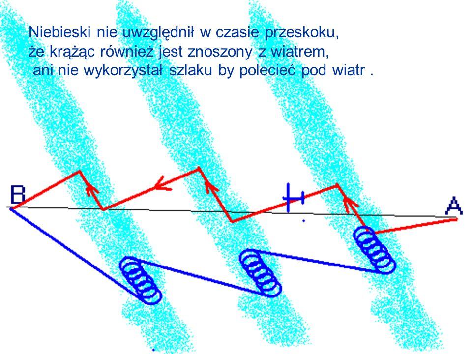 Niebieski nie uwzględnił w czasie przeskoku, że krążąc również jest znoszony z wiatrem, ani nie wykorzystał szlaku by polecieć pod wiatr.