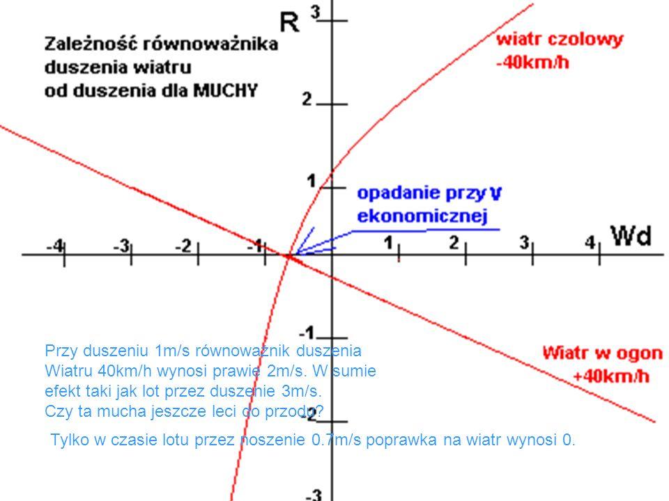 Przy duszeniu 1m/s równoważnik duszenia Wiatru 40km/h wynosi prawie 2m/s. W sumie efekt taki jak lot przez duszenie 3m/s. Czy ta mucha jeszcze leci do