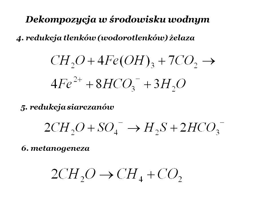 Dekompozycja w środowisku wodnym 4. redukcja tlenków (wodorotlenków) żelaza 5. redukcja siarczanów 6. metanogeneza