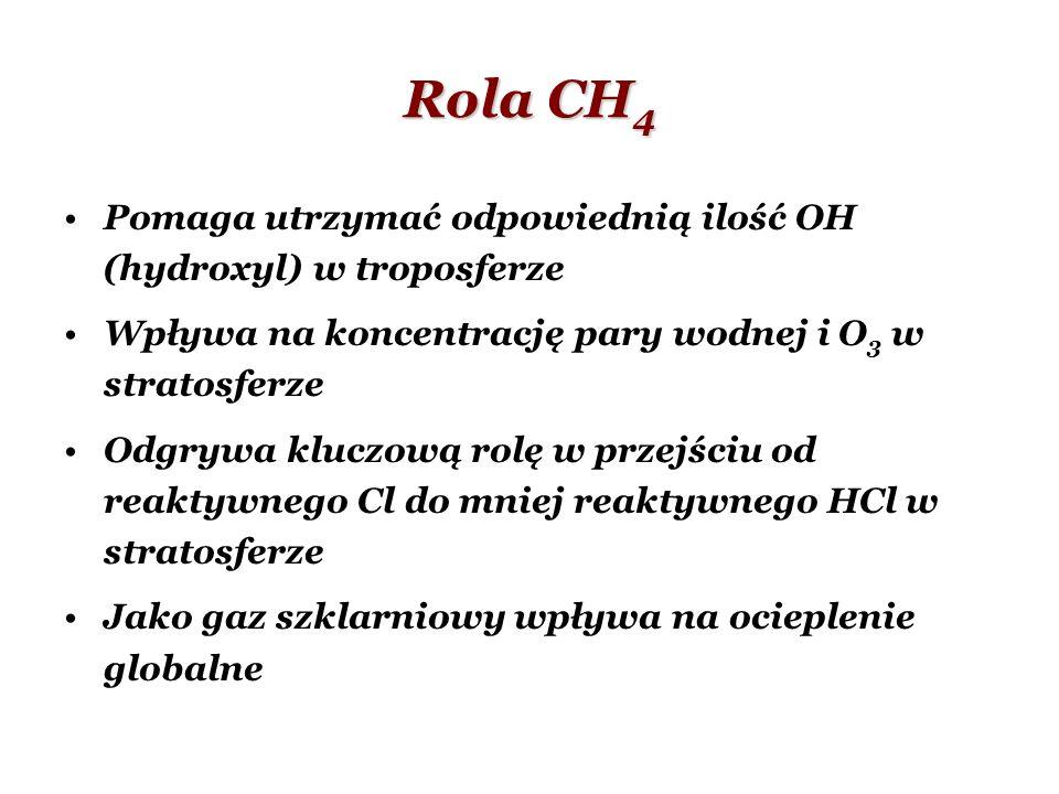 Rola CH 4 Pomaga utrzymać odpowiednią ilość OH (hydroxyl) w troposferze Wpływa na koncentrację pary wodnej i O 3 w stratosferze Odgrywa kluczową rolę