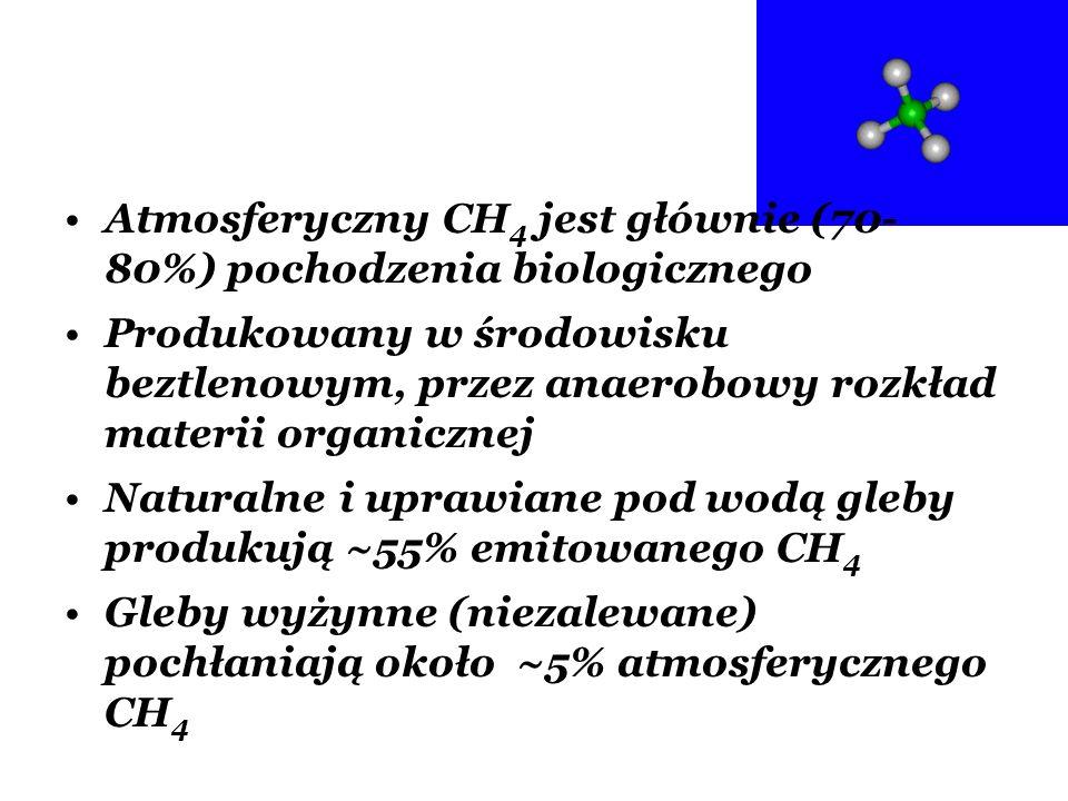 Atmosferyczny CH 4 jest głównie (70- 80%) pochodzenia biologicznego Produkowany w środowisku beztlenowym, przez anaerobowy rozkład materii organicznej