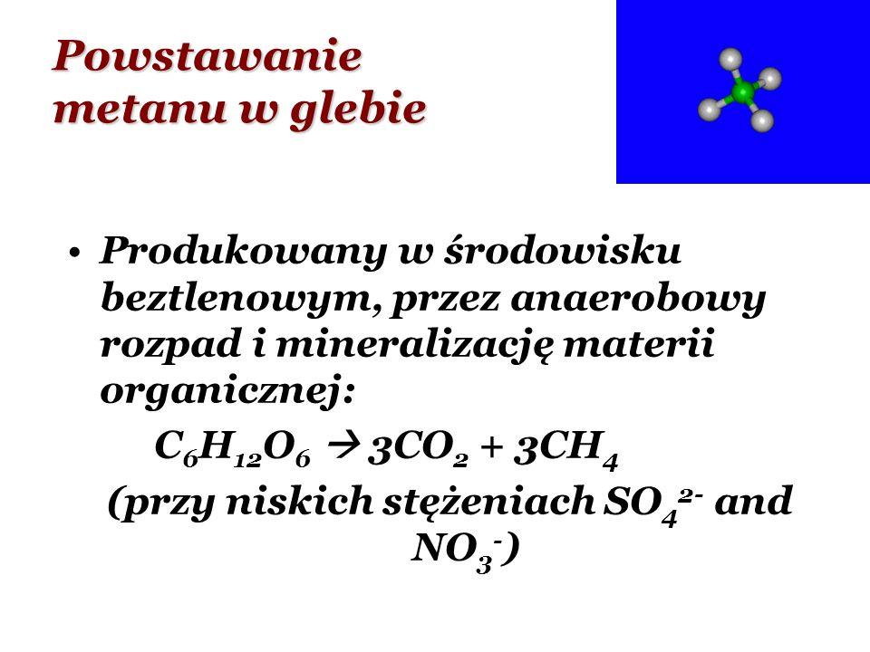 Powstawanie metanu w glebie Produkowany w środowisku beztlenowym, przez anaerobowy rozpad i mineralizację materii organicznej: C 6 H 12 O 6 3CO 2 + 3C