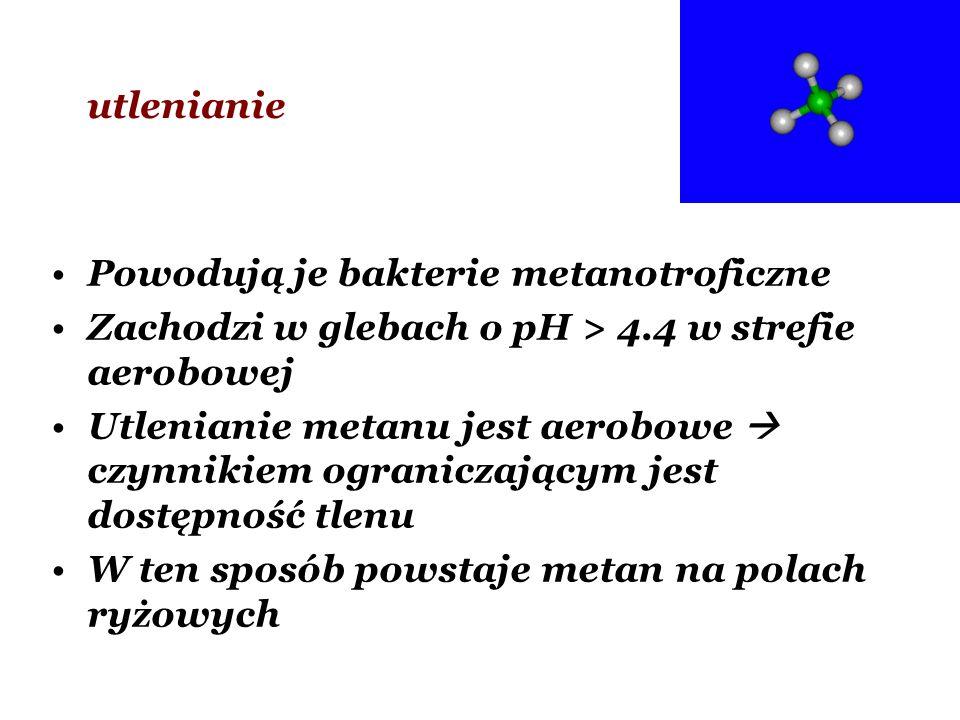 Powodują je bakterie metanotroficzne Zachodzi w glebach o pH > 4.4 w strefie aerobowej Utlenianie metanu jest aerobowe czynnikiem ograniczającym jest