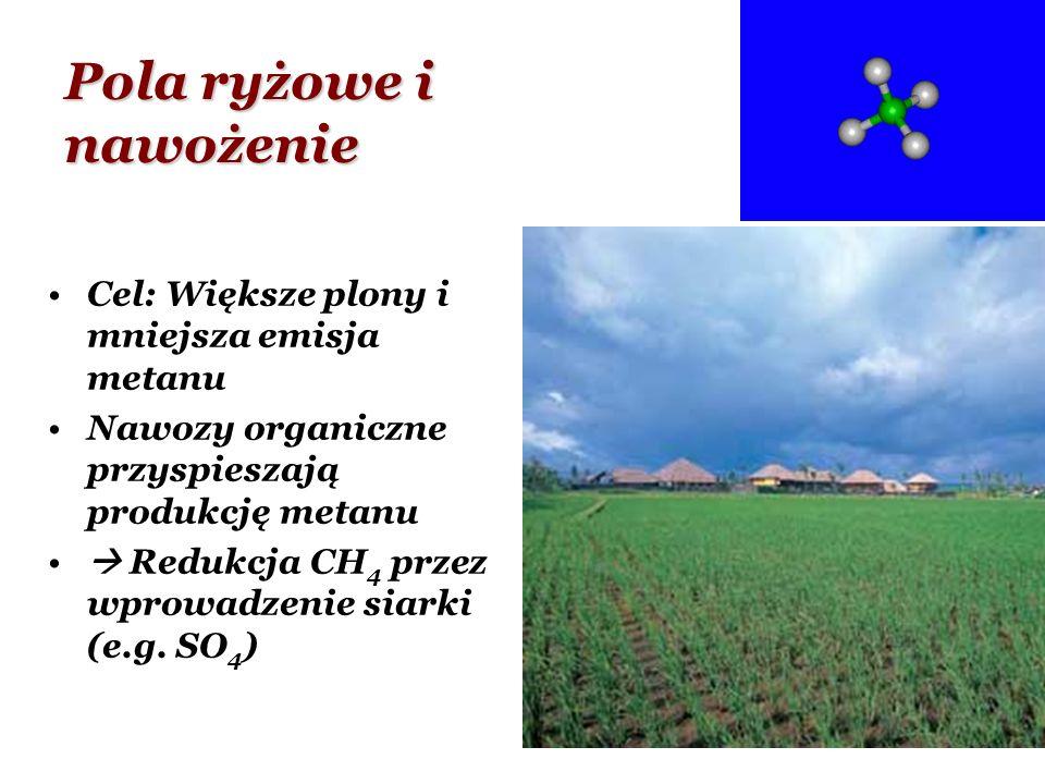 Pola ryżowe i nawożenie Cel: Większe plony i mniejsza emisja metanu Nawozy organiczne przyspieszają produkcję metanu Redukcja CH 4 przez wprowadzenie