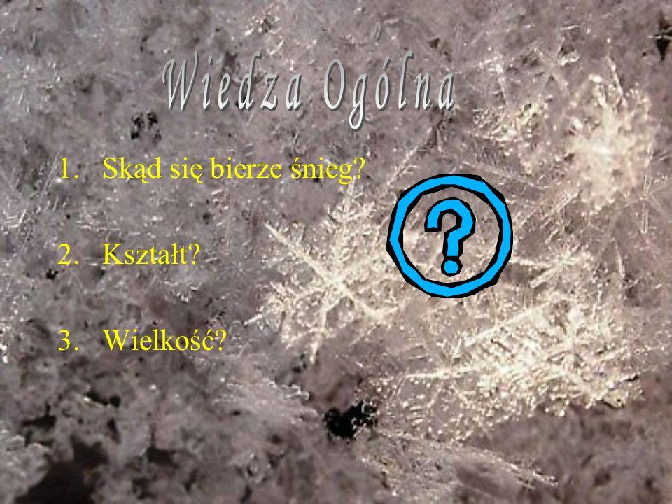 1.Skąd się bierze śnieg? 2.Kształt? 3.Wielkość?