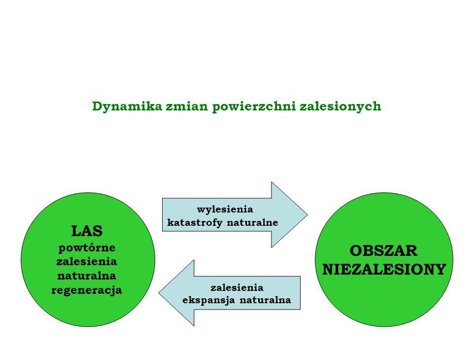 OBSZAR NIEZALESIONY LAS powtórne zalesienia naturalna regeneracja wylesienia katastrofy naturalne zalesienia ekspansja naturalna Dynamika zmian powierzchni zalesionych