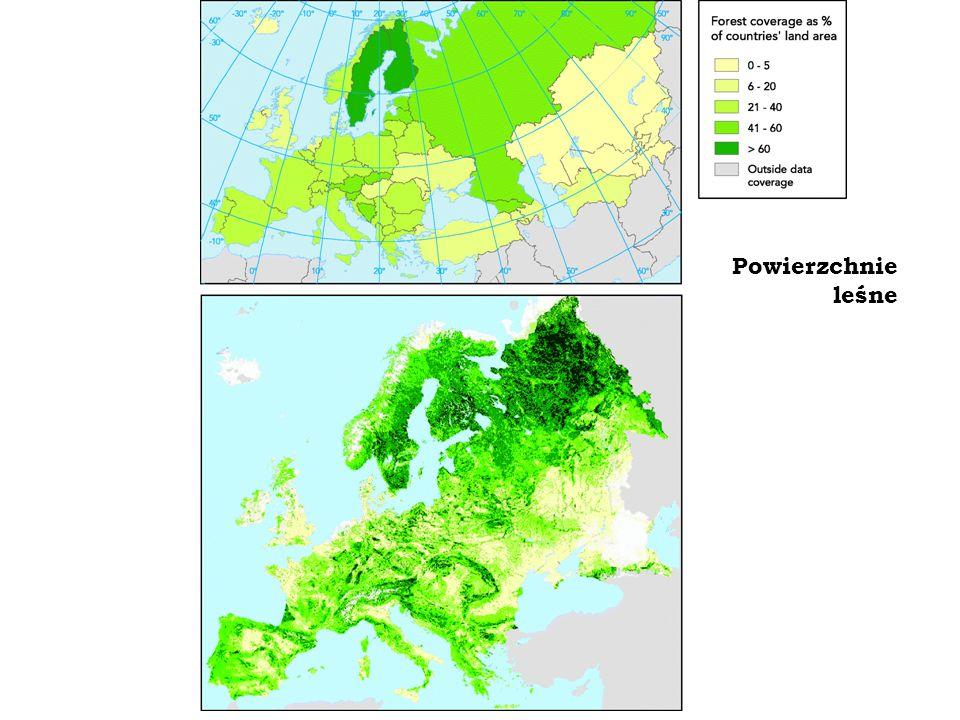 Lasy wokół europejskich stolic