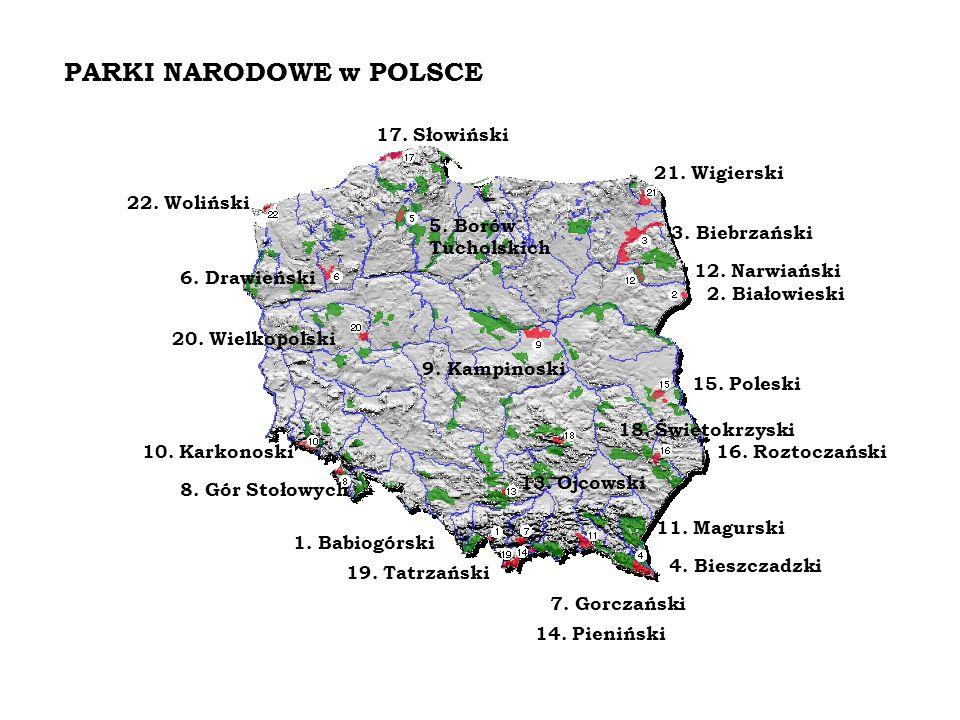 1.Babiogórski 2. Białowieski 3. Biebrzański 4. Bieszczadzki 5.