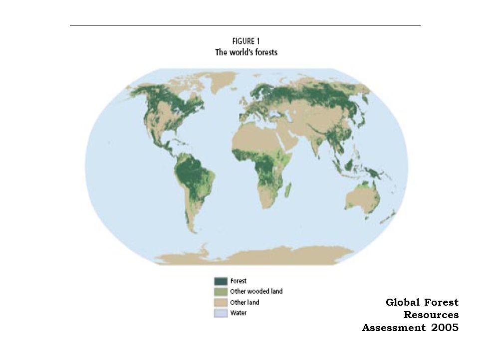 Biotechnologia i środowisko: wady 1.może powodować konieczność opracowywania ciągle nowych chemicznych środków ochrony 2.Zwiększa uprawy na terenach marginalnych 3.może zwiekszać zuzycie nawozów na obszaracgh marginalnych 4.zwiększa tempo zanikania gatunków 5.zmniejsza powierzchnię zajmowana przez ekosystemy naturalne 6.osłabia działania ekosystemów 7.wzrost powierzchni nawadnianych zwiększa erozję gleby wzrost ryzyka pustynnienia spadek bioróżnorodności wzrost zużycia paliw kopalnych: wzrost globalnego ocieplenia degradacja środowiska i utrata zasobów genetycznych