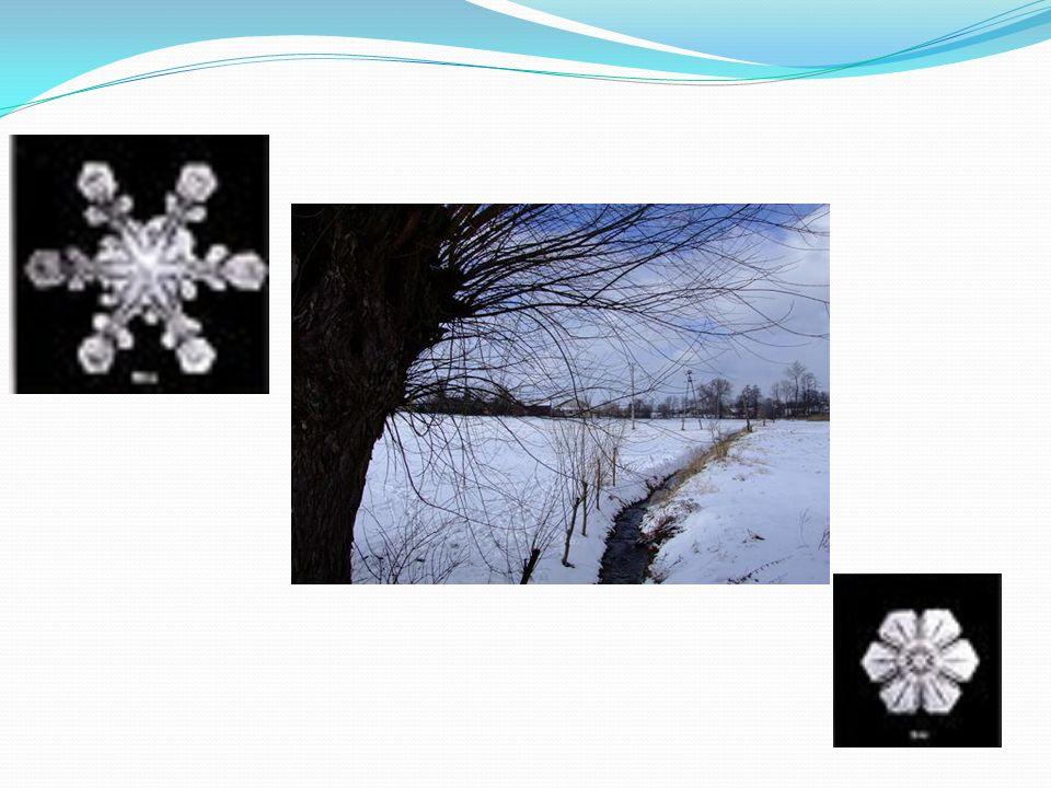 Śnieg jest biały, chociaż kryształki lodu, z których się składa, są przeźroczyste.