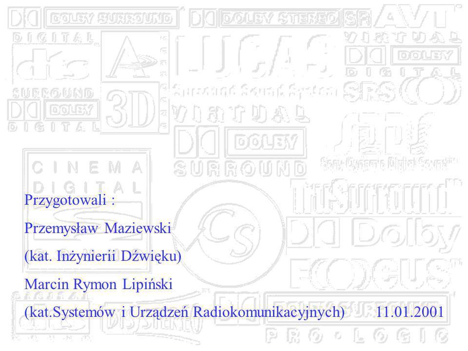 Przygotowali : Przemysław Maziewski (kat.