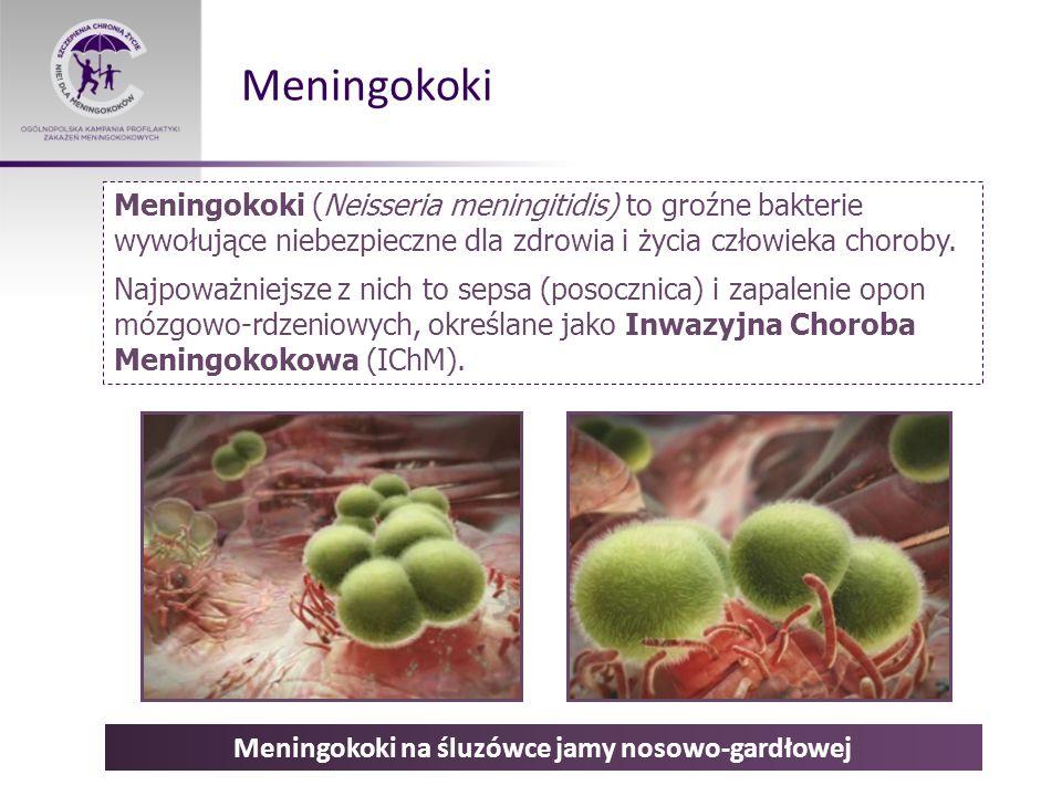 Meningokoki Meningokoki (Neisseria meningitidis) to groźne bakterie wywołujące niebezpieczne dla zdrowia i życia człowieka choroby. Najpoważniejsze z