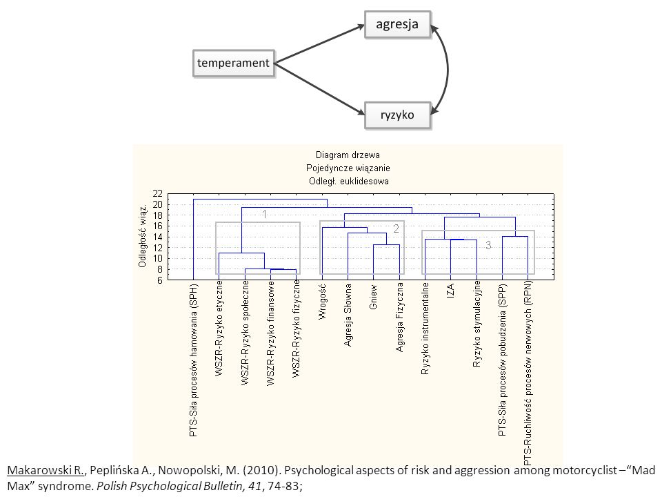Makarowski R., Peplińska A., Nowopolski, M. (2010). Psychological aspects of risk and aggression among motorcyclist –Mad Max syndrome. Polish Psycholo