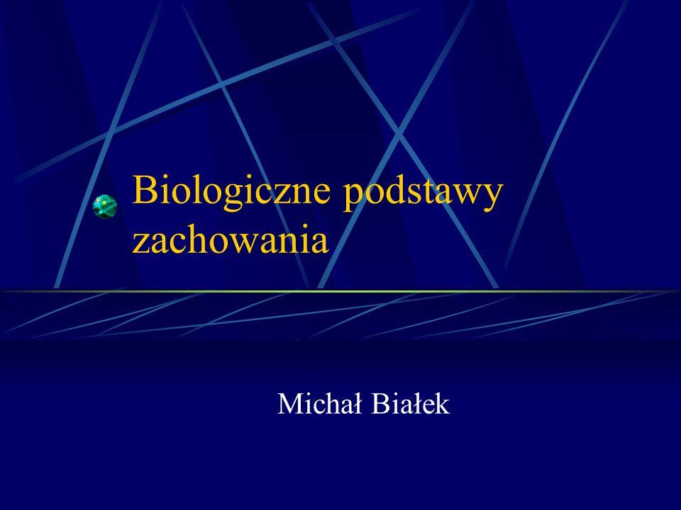 Biologiczne podstawy zachowania Michał Białek