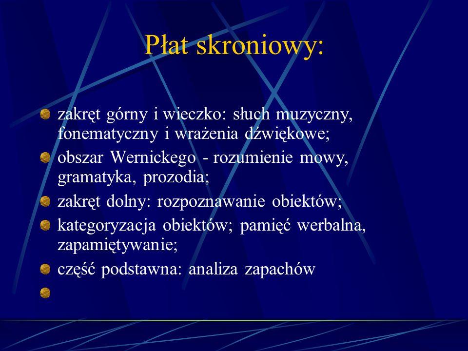 Płat skroniowy: zakręt górny i wieczko: słuch muzyczny, fonematyczny i wrażenia dźwiękowe; obszar Wernickego - rozumienie mowy, gramatyka, prozodia; z