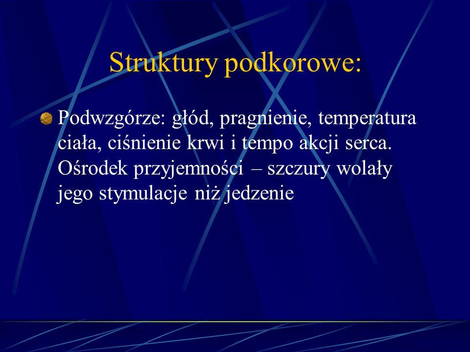 Struktury podkorowe: Podwzgórze: głód, pragnienie, temperatura ciała, ciśnienie krwi i tempo akcji serca. Ośrodek przyjemności – szczury wolały jego s