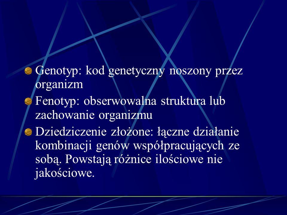 Genotyp: kod genetyczny noszony przez organizm Fenotyp: obserwowalna struktura lub zachowanie organizmu Dziedziczenie złożone: łączne działanie kombin