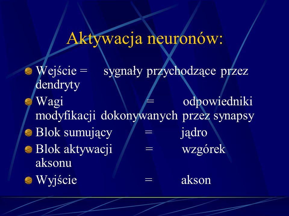 Wejście = sygnały przychodzące przez dendryty Wagi = odpowiedniki modyfikacji dokonywanych przez synapsy Blok sumujący = jądro Blok aktywacji = wzgóre