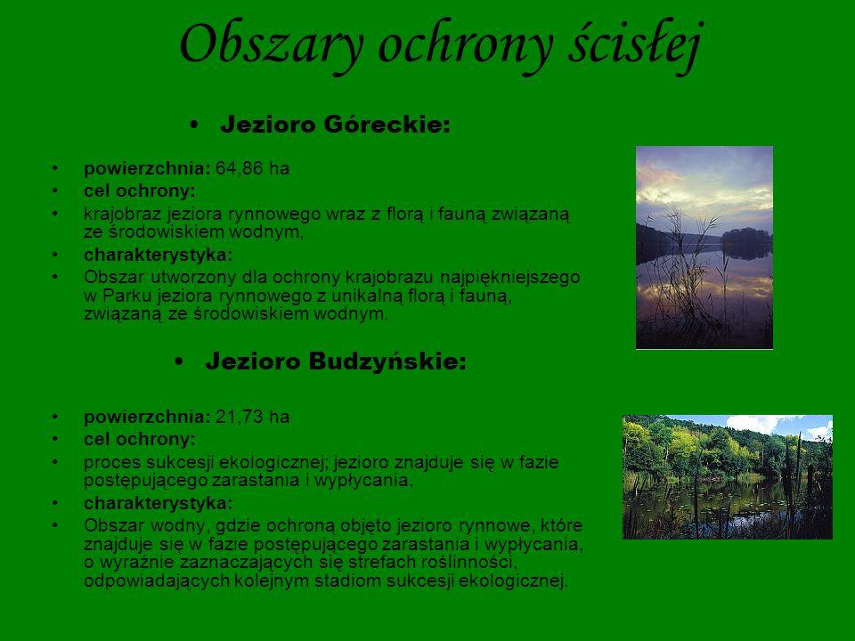 Obszary ochrony ścisłej Jezioro Skrzynka: powierzchnia: 6,90 ha cel ochrony: flora i fauna jedynego w Parku jeziora skąpożywnego (dystroficznego), znajdującego się w fazie zarastania, charakterystyka: Obszar wodno-torfowiskowy, chroniący jedyne w Parku jezioro skąpożywne (dystroficzne), znajdujące się w fazie szybkiego zarastania, wraz z charakterystyczną florą i fauną.