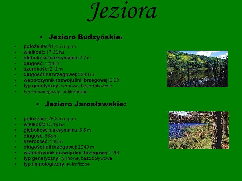 Jeziora Jezioro Małe: położenie: 78,6 m n.p.m.