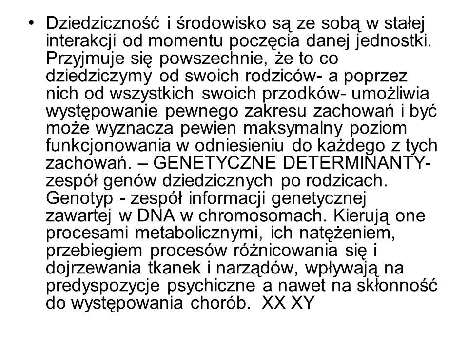 PARAGENETYCZNE- środowisko matczyne, wewnątrzmaciczne.( hormony) ŚRODOWISKOWE-modyfikują genetycznie zdeterminowany przebieg rozwoju - czynniki biogeograficzne np.