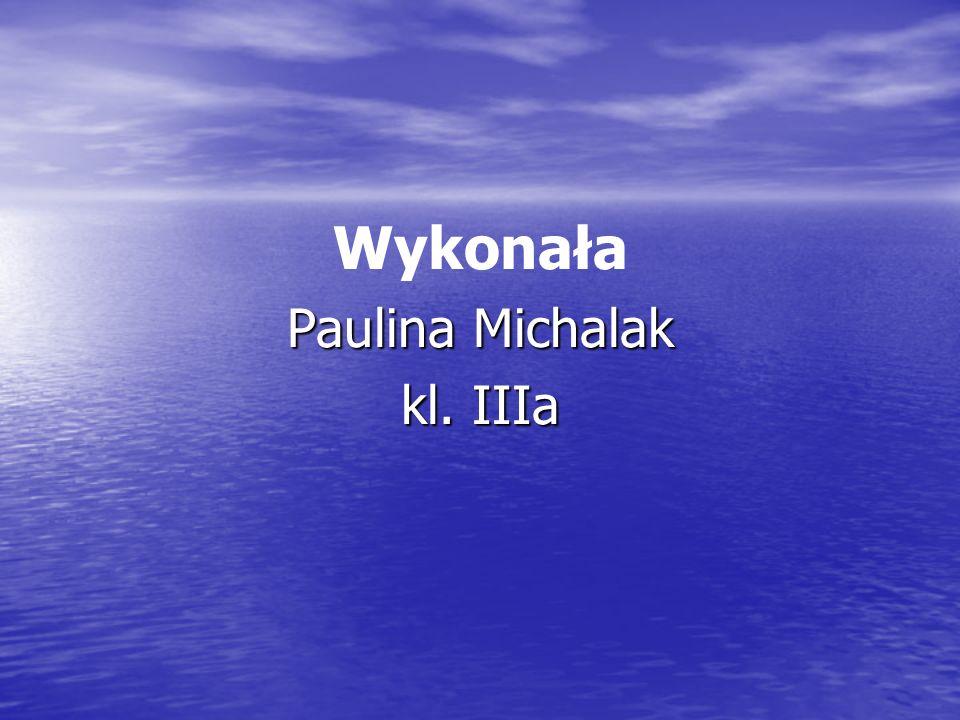 Wykonała Paulina Michalak kl. IIIa