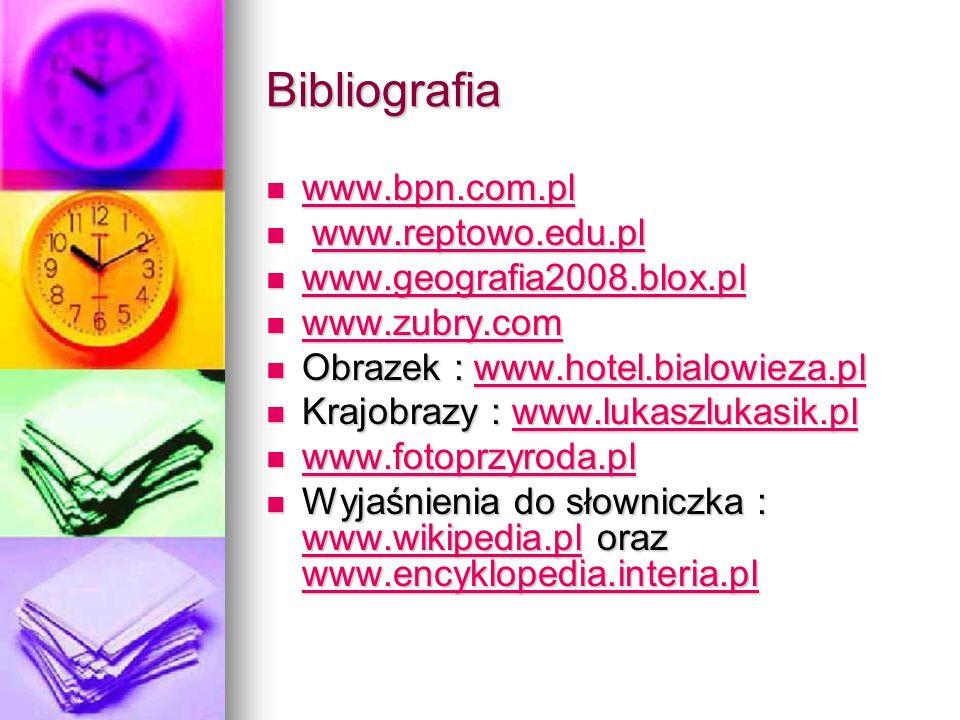 Bibliografia www.bpn.com.pl www.bpn.com.pl www.bpn.com.pl www.reptowo.edu.pl www.reptowo.edu.plwww.reptowo.edu.pl www.geografia2008.blox.pl www.geogra