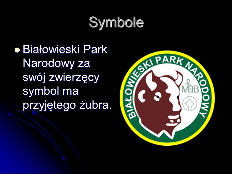 Symbole Białowieski Park Narodowy za swój zwierzęcy symbol ma przyjętego żubra. Białowieski Park Narodowy za swój zwierzęcy symbol ma przyjętego żubra