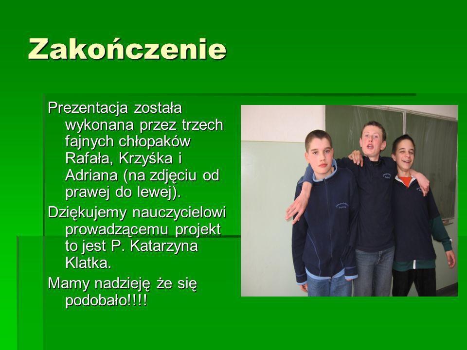 Zakończenie Prezentacja została wykonana przez trzech fajnych chłopaków Rafała, Krzyśka i Adriana (na zdjęciu od prawej do lewej). Dziękujemy nauczyci
