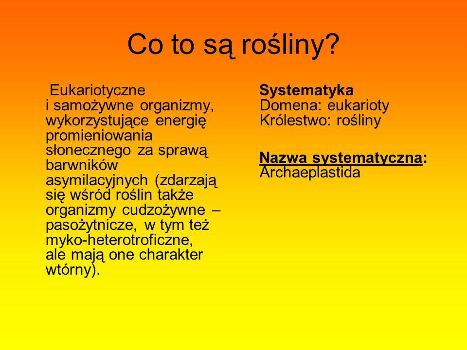 Budowa komórki roślinnej Opis: A) ściana komórkowa, B) plasmodesma, C) błona komórkowa, D) chloroplast, E) błona tylakoidu, F) mitochondrium, G) lizosom, H) aparat Golgiego, I) wakuola, J) retikulum endoplazmatyczne gładkie, K) retikulum endoplazmatyczne szorstkie, L) jądro, M) błona jądrowa, N) otwór w błonie jądrowej, O) jąderko.