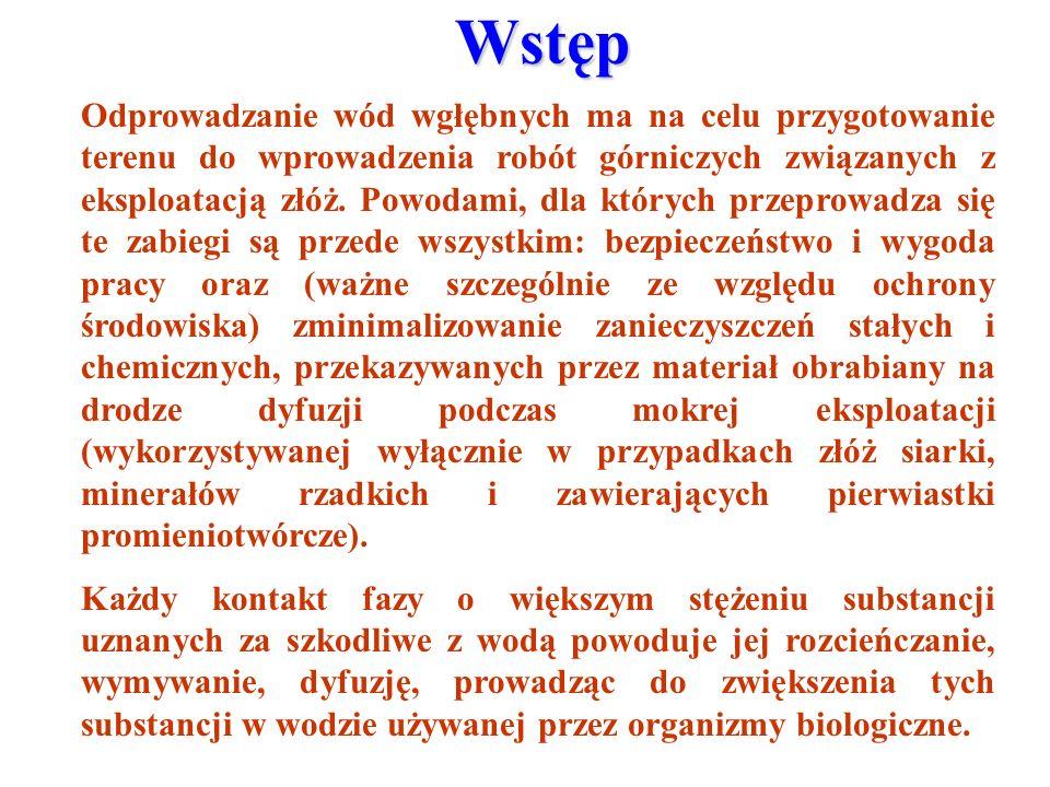 Analiza tła hydrochemicznego siarczanów wód podziemnych odkrywki Szczerców