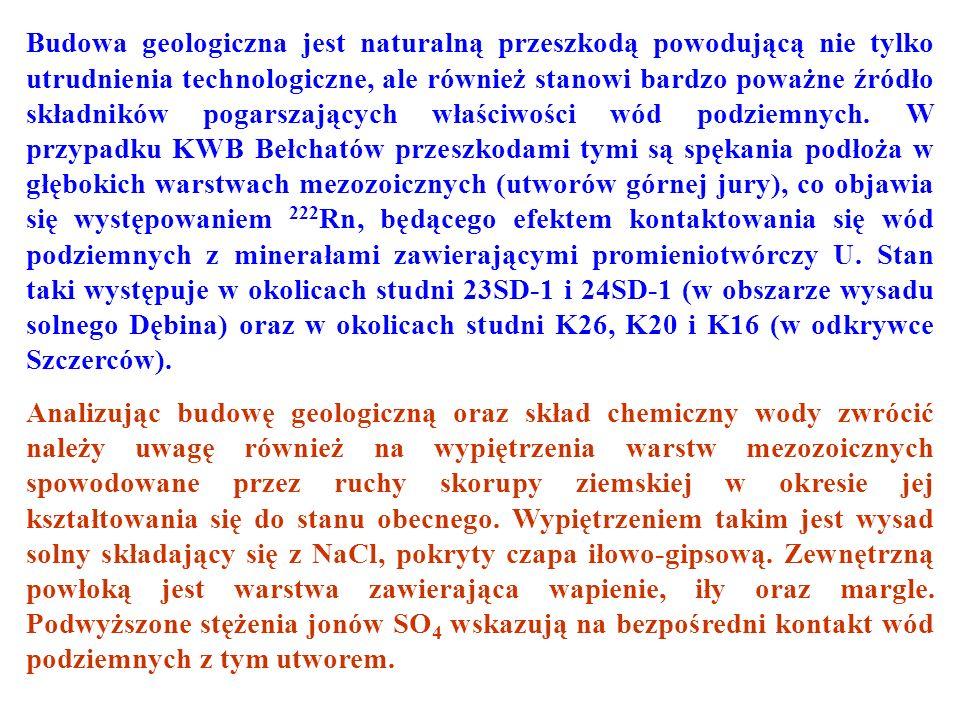 Rozkład aktywności 222 Rn w wodach podziemnych odkrywki Szczerców