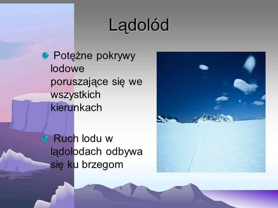 Powstawanie lodowców 1.Od lądolodu odrywa się kawałek masy lodowej 2.Masy te spływają w stronę oceanu tworząc lodowiec szelfowy 3.Od lodowca szelfoweg