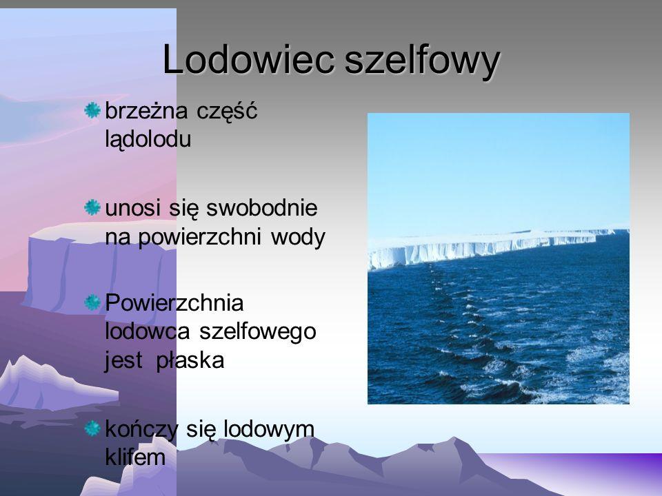 Lądolód Potężne pokrywy lodowe poruszające się we wszystkich kierunkach Ruch lodu w lądolodach odbywa się ku brzegom