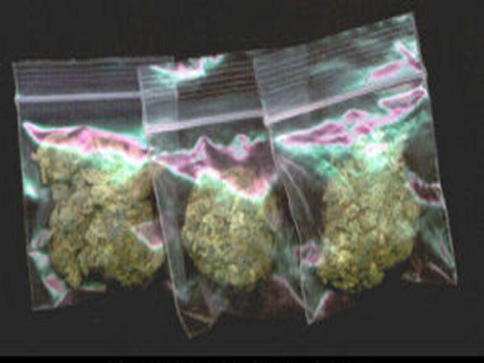 marihuana przechowywana w woreczku