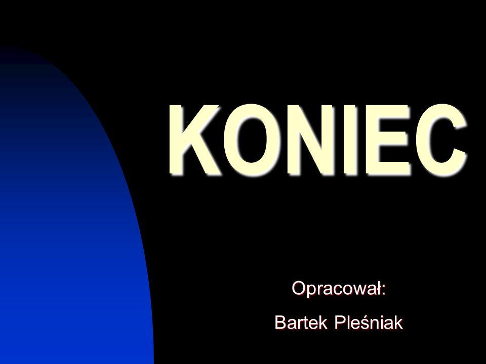 KONIEC Opracował: Bartek Pleśniak