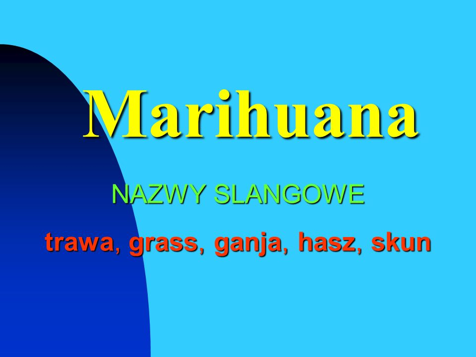 Marihuana NAZWY SLANGOWE trawa, grass, ganja, hasz, skun