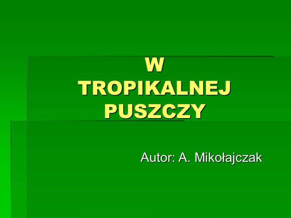 W TROPIKALNEJ PUSZCZY Autor: A. Mikołajczak